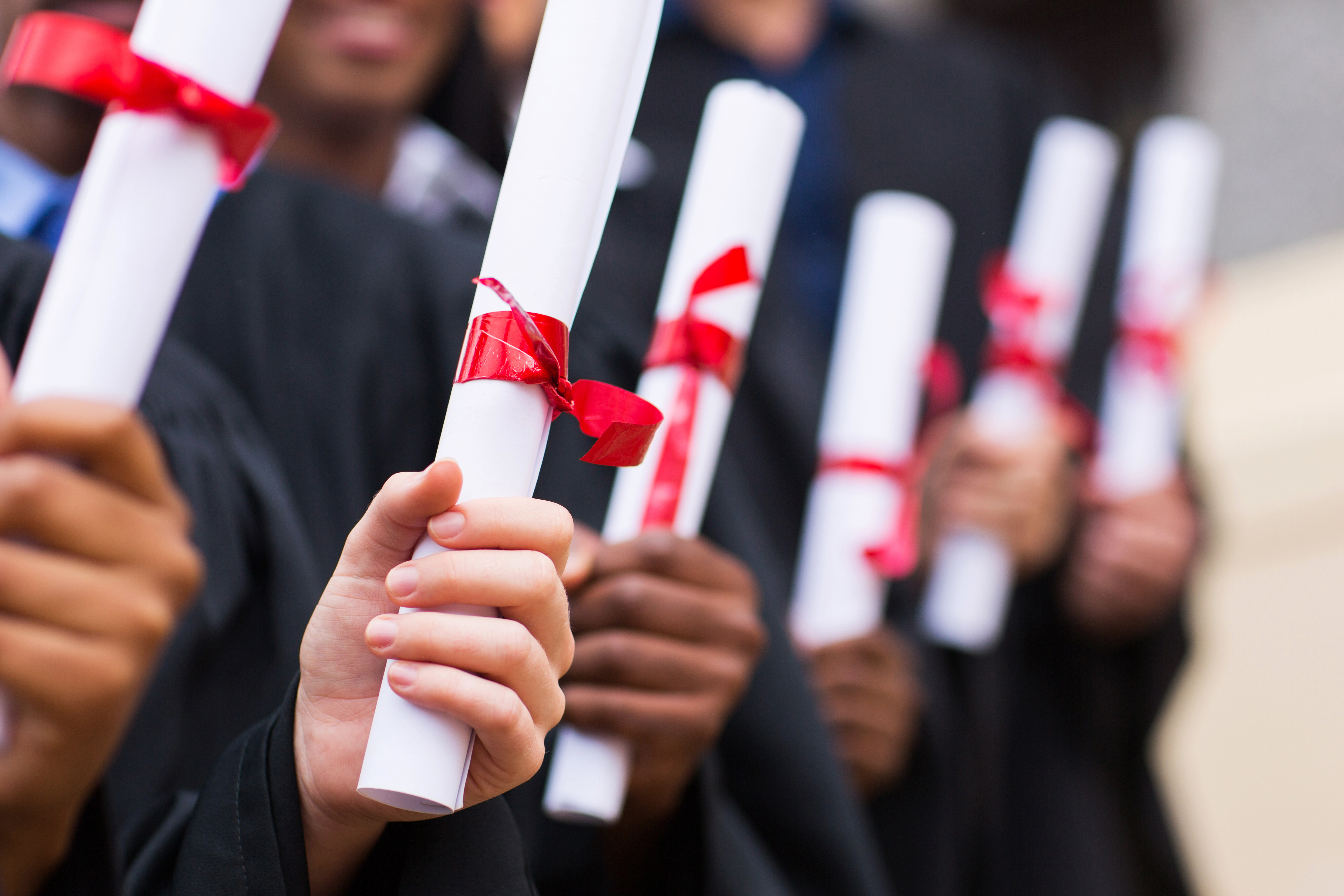 Does university really prepare graduates for the world of work?