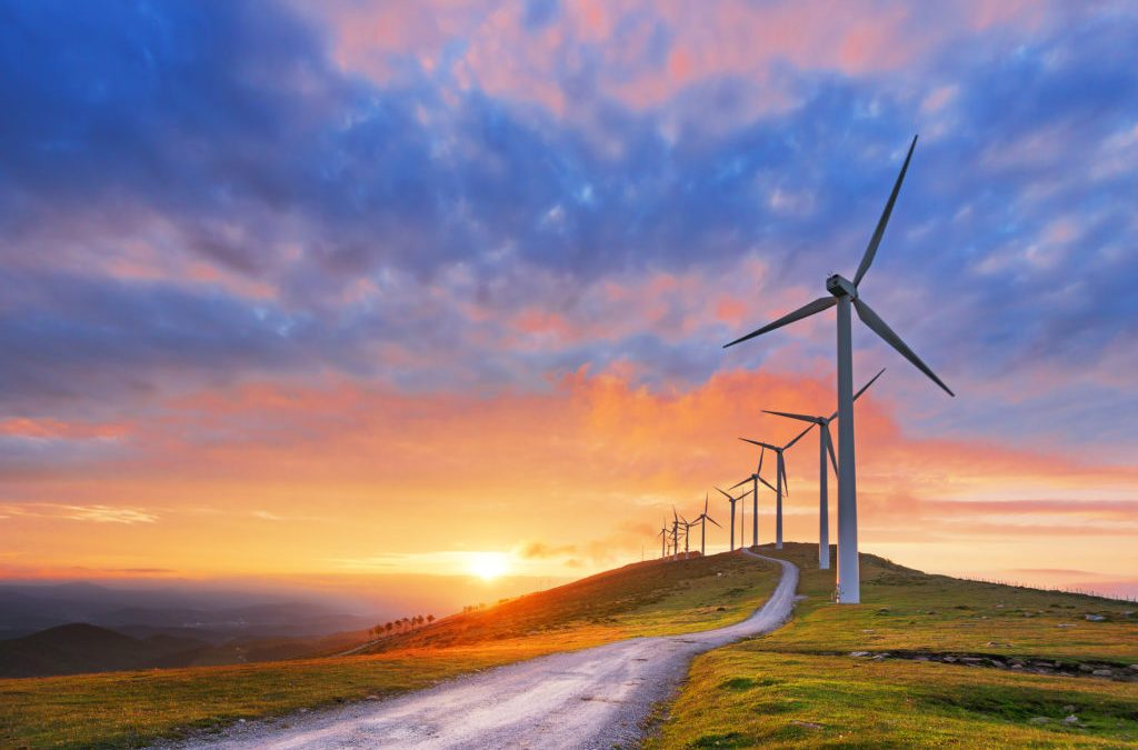 Why small businesses should go green
