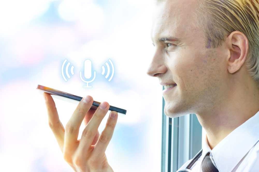 Voice search for small businesses