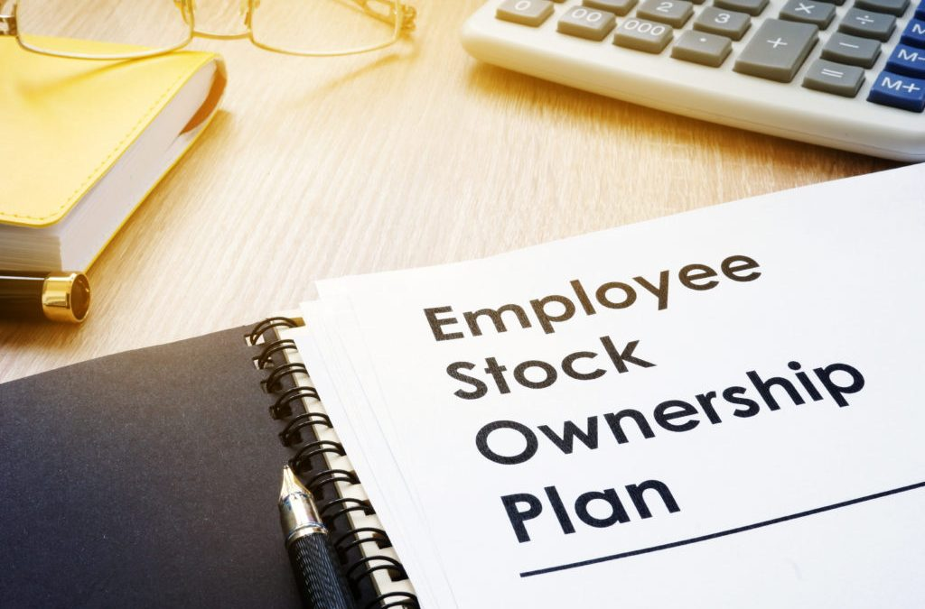 How to set up a share options scheme for your small business